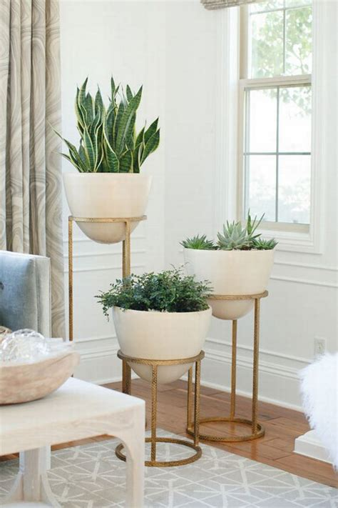 gorgeous indoor planters you will fall in with