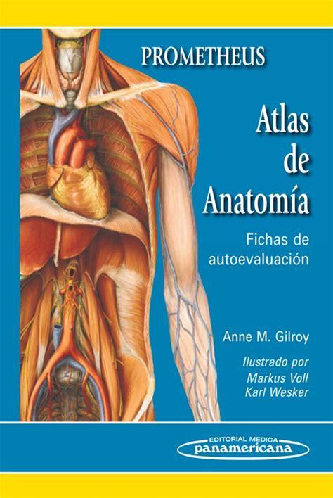 libro anatoma para posturas de prometheus atlas de anatom 237 a fichas de autoevaluaci 243 n