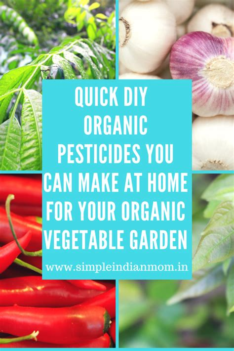 Quick Diy Organic Pesticides You Can Make At Home For Your Organic Pesticides For Vegetable Garden