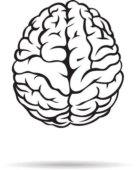 White Brain black and white brain clipart great free clipart