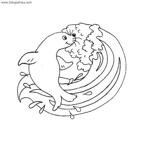 imagenes para colorear foca dibujo de foca jugando en la ola dibujos de focas para