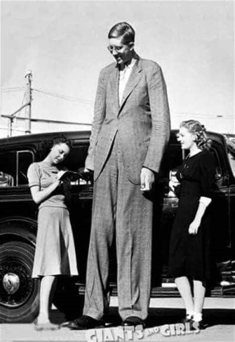 8 feet in inches 1000 images about robert wadlow tallest man in history