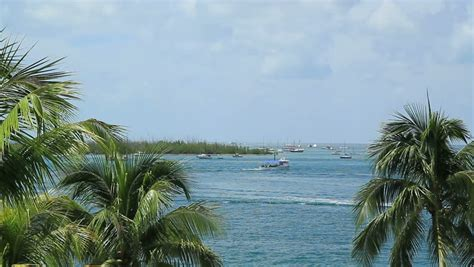 key west boats videos key west florida scenic ocean view boats and palm trees