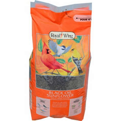 black sunflower seed tractor supply royal wing black sunflower bird food 6 lb at