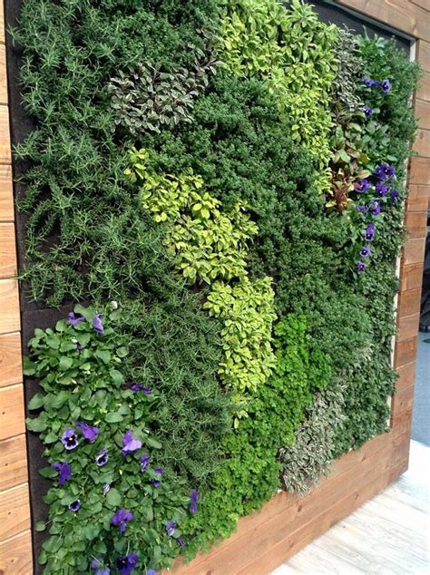 wall herb garden 25 best ideas about vertical garden wall on pinterest