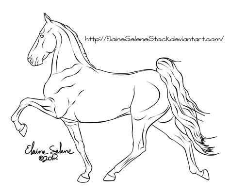 coloring pages of tennessee walking horses horse lines by elaineselenestock