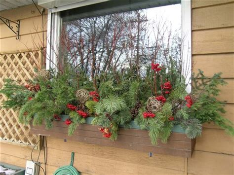 ideas for winter window boxes winter windowboxes windows boxes windowboxes gardens