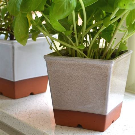 Windowsill Herbs by Windowsill Herb Pots Weston Mill Pottery Uk