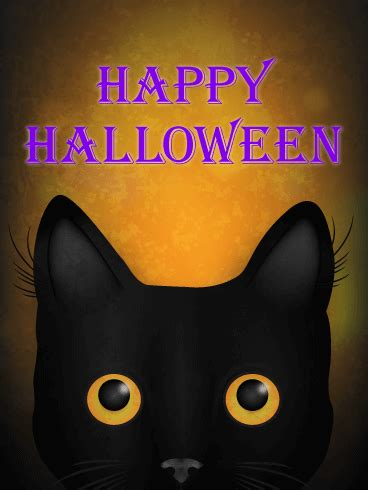 gazing halloween black cat card birthday greeting cards  davia
