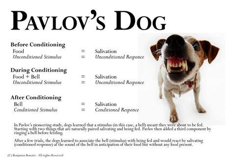 pavlov dogs ivan pavlov like success