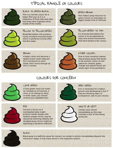 bowel color color chart www pixshark images galleries