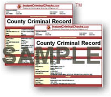 Viewing Criminal Record View All Criminal Background Check Sle Reports