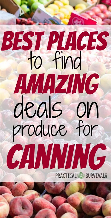 best place to find a new best places to find great deals on produce to be canned practical survival