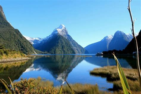 boat tour queenstown 25 best scenic flights to milford sound images on