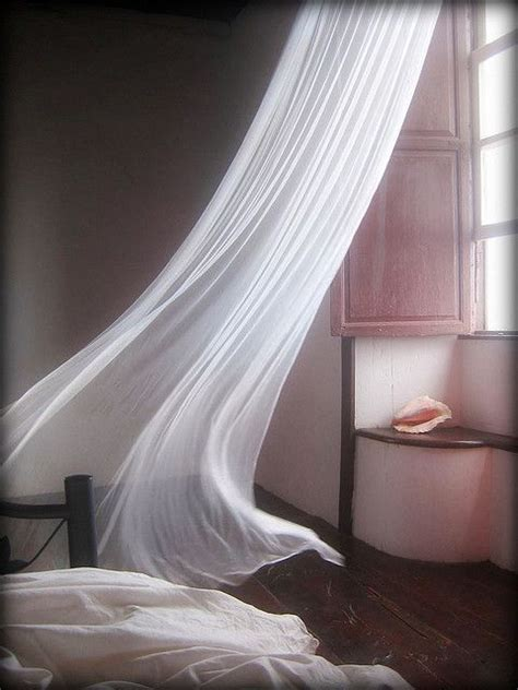 wind blowing curtains that light breeze by fleur robertson beauty pinterest