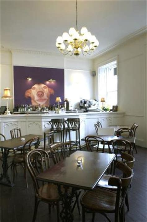 Dining Room Edinburgh by Front Dining Room Picture Of The Dogs Edinburgh