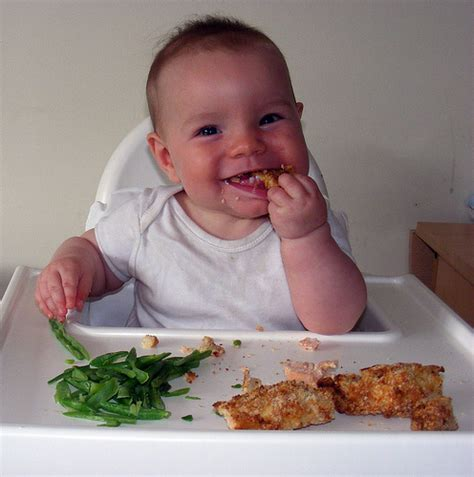 Real Food For Babies And Toddlers Baby Led Weaning And Beyond Ebook dummies guide to baby led weaning tips foods recipes