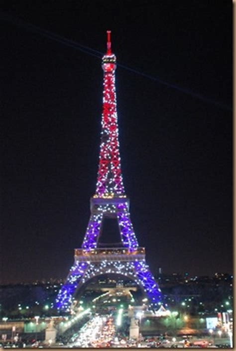 flowers and more eiffel tower under christmas lights