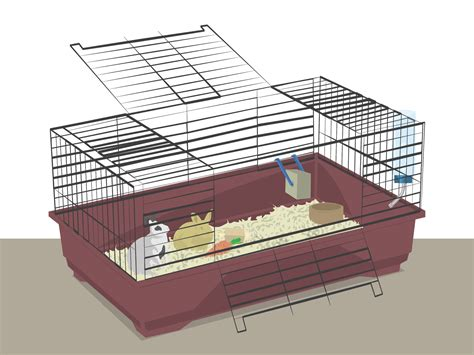 how to cage a how to prepare a rabbit cage 9 steps with pictures wikihow
