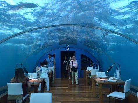 maldives ithaa underwater restaurant overwater villa photo9 jpg bild von conrad maldives rangali island
