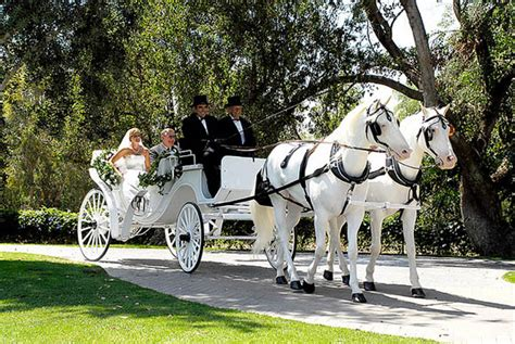 Wedding Transportation by Wedding Transportation Ideas With Bridal Car Photography