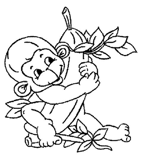 color monkey monkey coloring pages printable
