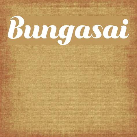 bungasai font ffontsnet