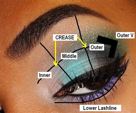 eyeshadow diagram the fancy tips for beginners eyeshadow placement