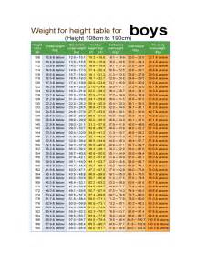 Height Weight Chart   6 Free Templates in PDF, Word, Excel