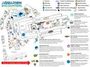 key largo tourist attraction aquarium activities for