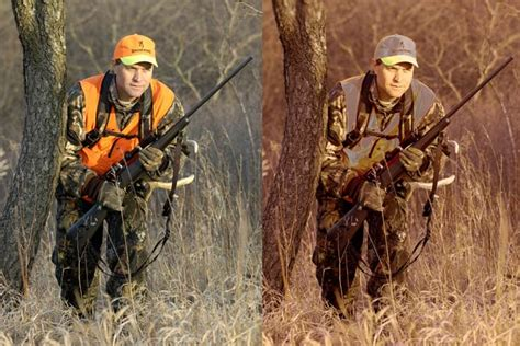 do deer see color facts about deer vision and how it can help us succeed