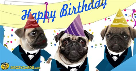 pug singing happy birthday singing pugs birthday ecard view the popular singing pugs birthday ecard ecard