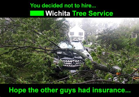 home insurance trees close to tree trimming wichita ks wichita tree service photos