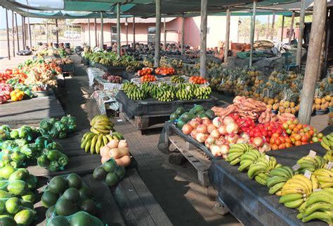 fruit d afrique guide des fruits et l 233 gumes de saison en afrique du sud