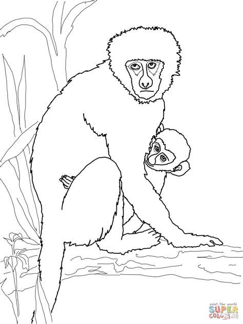 vervet monkey coloring page vervet coloring download vervet coloring