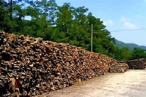 legna da ardere pavia foto legna da ardere de greentek 47044 habitissimo