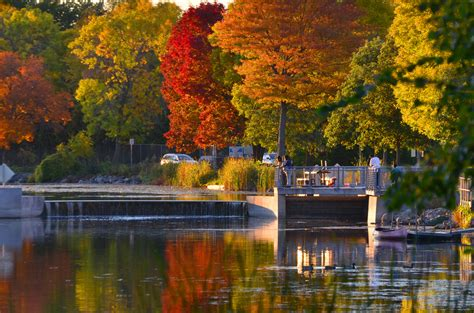 fall colors in wisconsin fall color at wingra creek in wi fall color at