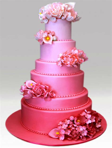 Hochzeitstorte Pink by 20 Pink Colored Wedding Cake Ideas Wedding Cake Ideas