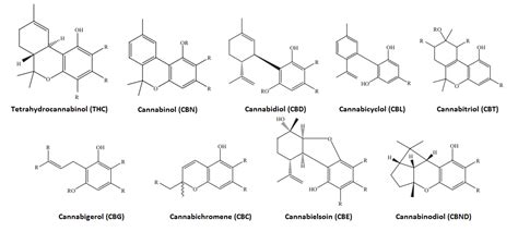marijuana scientific review on usage dosage side