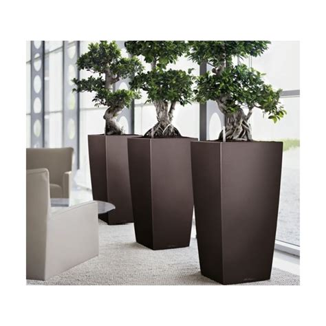 Lechuza Planters by Lechuza Self Watering Cubico Planter Newpro Containers