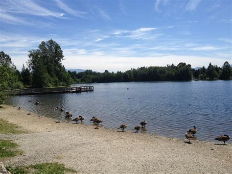 beautiful mill lake park in abbotsford bc https www yd