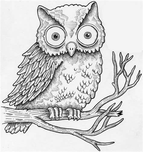 how to draw doodle owl how to draw a realistic owl step by step easy for