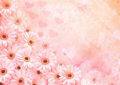 imagenes flores de otoño fondos con flores fondos de pantalla y mucho m 225 s