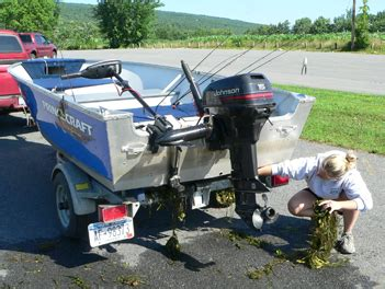 boat trailer inspection ny prevent the spread of aquatic invasive species nys dept