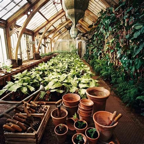 hogwarts set herbology greenhouse harry potter set design etc pinterest my boyfriend