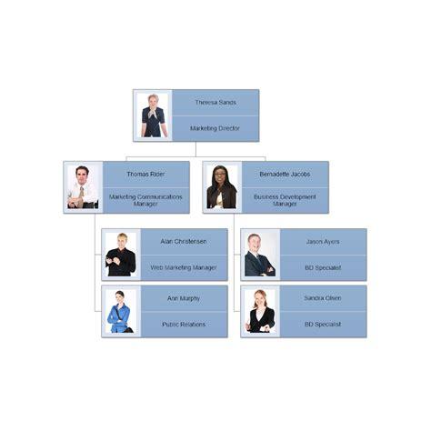organizational chart organizational chart exle
