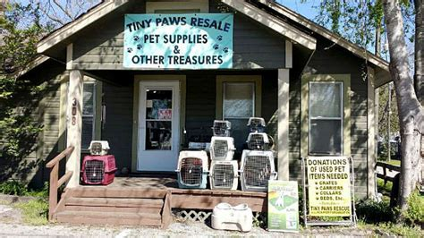 tiny paws small rescue tiny paws resale shop 183 tiny paws chi rescue