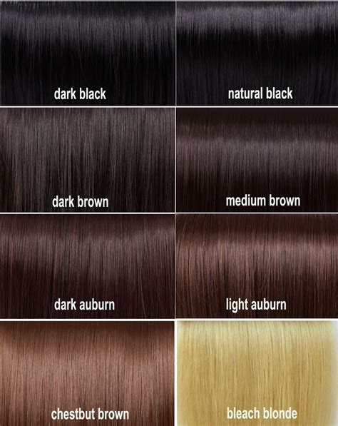 shades of brown shades of brown hair pinterest colour chart dark