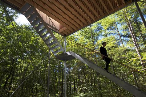 Forest Mba Tuition by Go Hasegawa Litude In The Experience Of Space