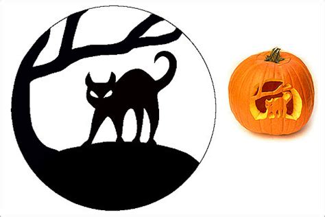 cat pumpkin template 28 cat pumpkin stencils for a spooky